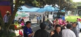 Integrantes de la UNTA protestan en Sedesol